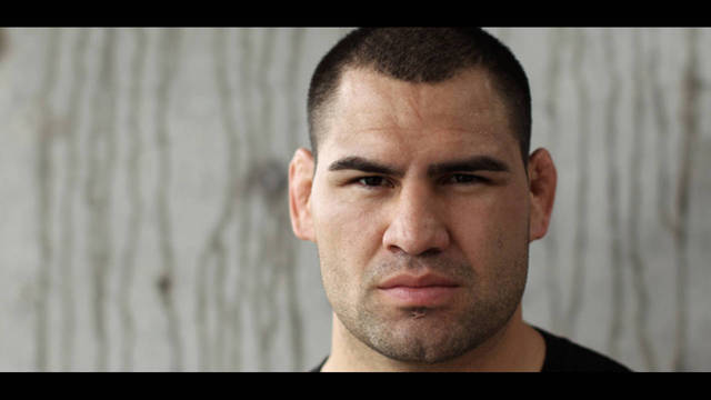 Cain Velasquez_31498826